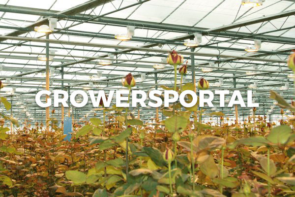 Go to Bloomer's growersportal!
